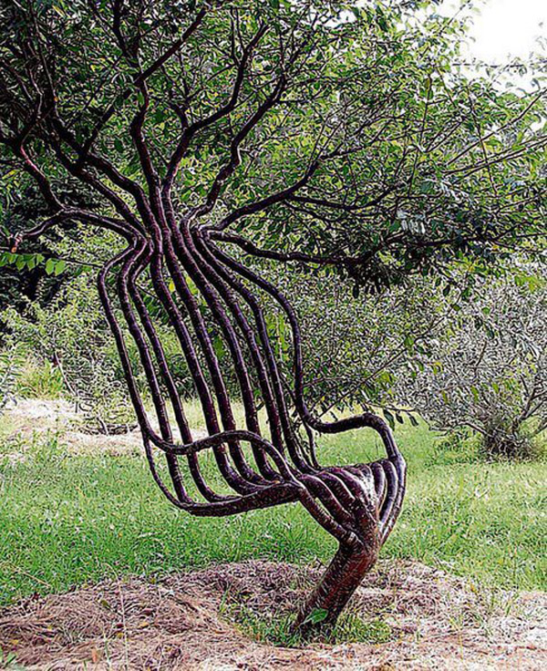 Living-Tree-Chair.jpg