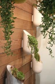 Modern Planter for the Modern Gardener