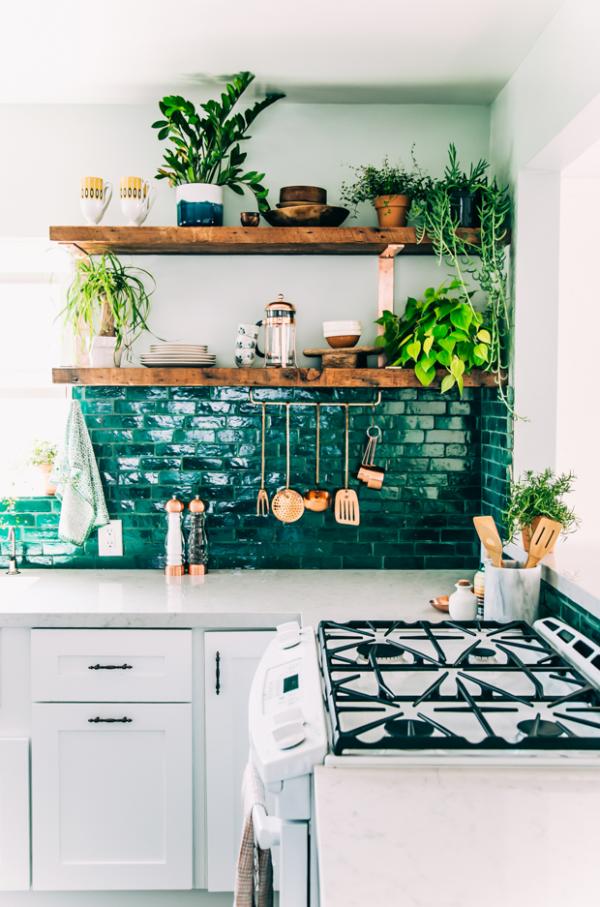 Liven Up Your Kitchen With Potted Plants