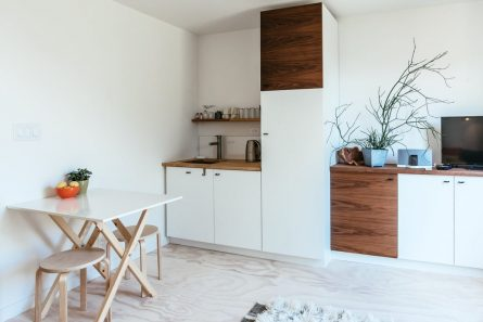 Renovation Tips Every Homeowner Needs