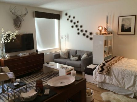 Make Your Studio Apartment Comfortable With These Layouts